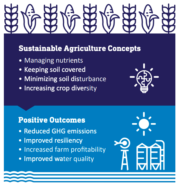 sustainable-agriculture-infographic.png?mtime=20200601030102#asset:11478